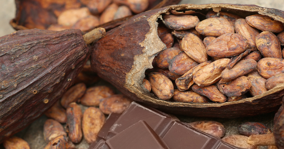 Cacao: The New Superfood on the Block